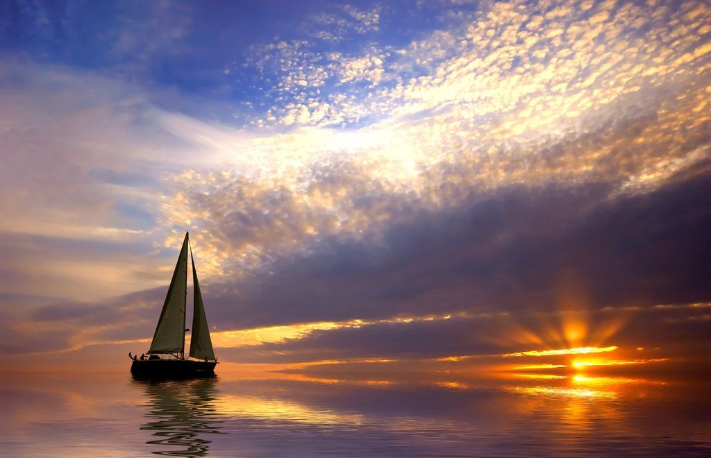 ヨット 世界一周